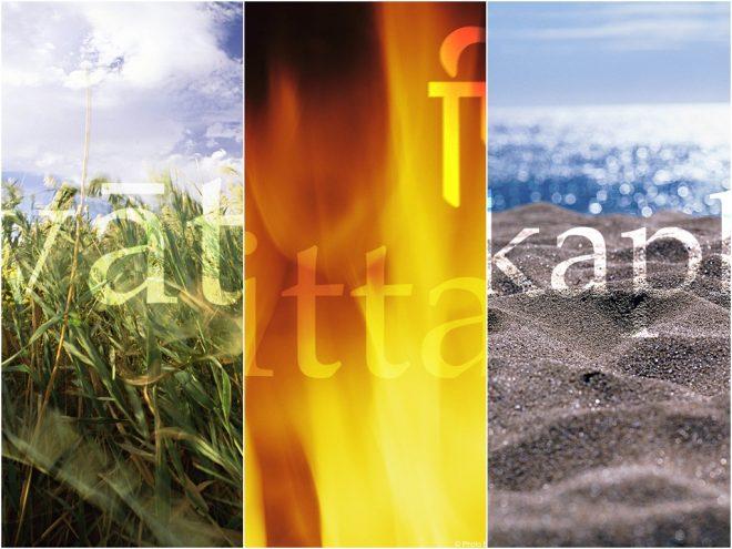 Dosha Story: Vata, Pitta und Kapha im Stress | Ayurveda Parkschlösschen Health Blog